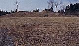鹿見塚の古墳