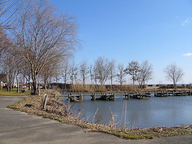 水郷トンボ公園3大