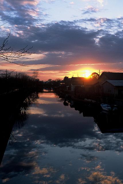 水郷の夕陽1大