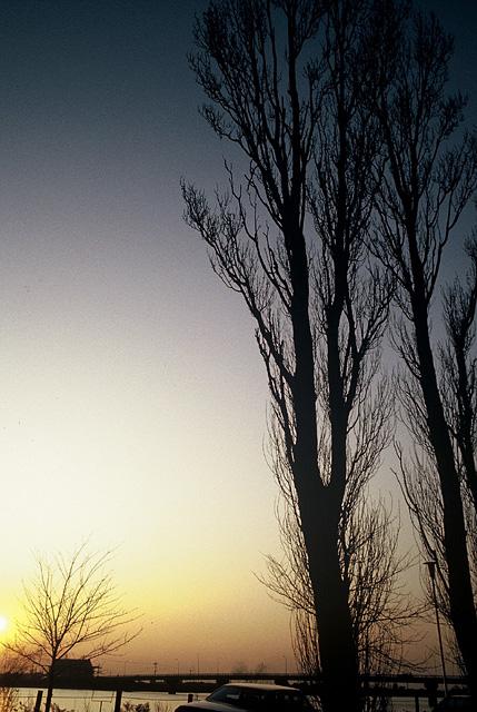 水郷の夕陽2大