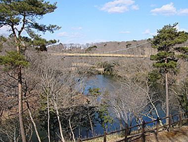 大膳池にかかるつり橋