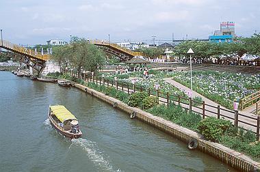 前川あやめ園沿いに流れる前川を遊覧