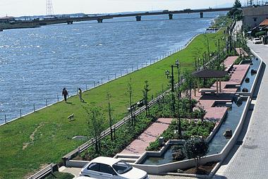 北利根川沿いに広がる芝生の公園