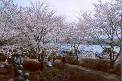 権現山公園・小2
