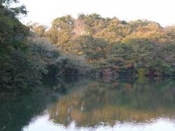 水郷県民の森・小10